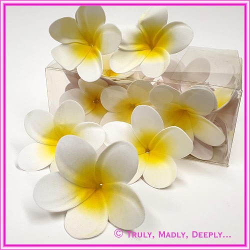 Artificial Flower Heads Latex Frangipani White with Yellow 6.5cm - Box of 24