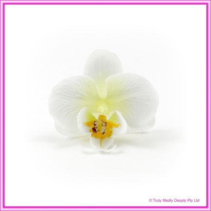 Artificial Flower Heads Silk Phalaenopsis Orchid White with Cream 5cm - Box of 24