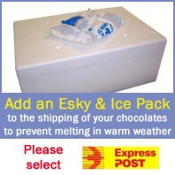 Esky & Ice Pack for Shipping of Chocolate Orders.