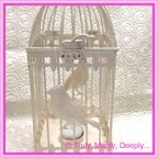 Wedding Card Bird Cage - Ivory 11x11x32cm