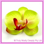 Artificial Flower Heads Silk Phalaenopsis Orchid Green with Pink 5cm - Box of 24