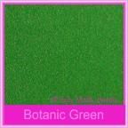 Bomboniere Box - 10cm Cube - Curious Metallics Botanic Green