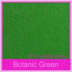 Bomboniere Box - 3 Chocolates - Curious Metallics Botanic Green