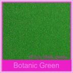 Curious Metallics Botanic Green 300gsm Card Stock - A4 Sheets